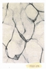 Picture of Horizon 160 Indoor Rug -Made In Belgium *Marble Cream