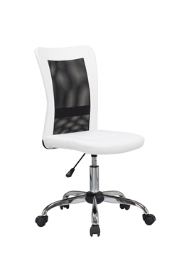 Picture of Snowfall Mesh Office Chair